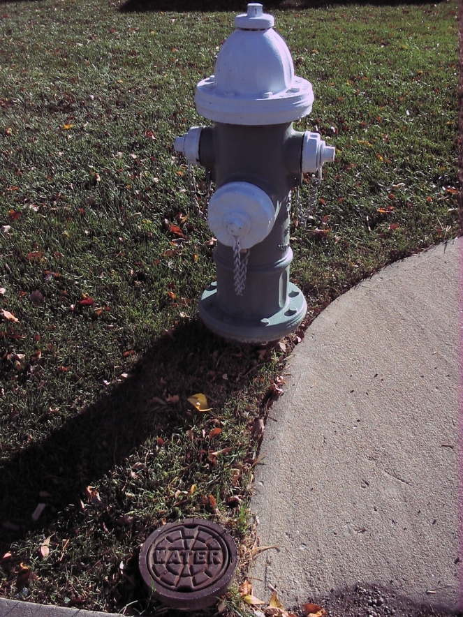 hydrant and water line