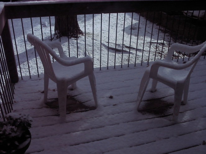first snow 2008-2009